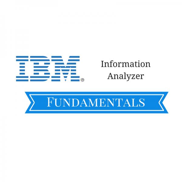 Information Analyzer Fundamentals